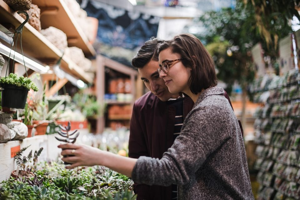 two strangers looking at plants and falling in love one day